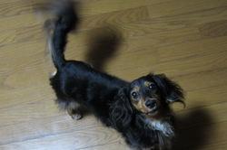 2011-08-19-04-16-13_800_2.jpg